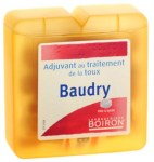 Boiron Baudry Pate à Sucer