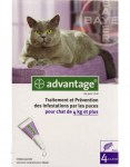 Advantage 80 Chat 4kg et + 6 Pipettes